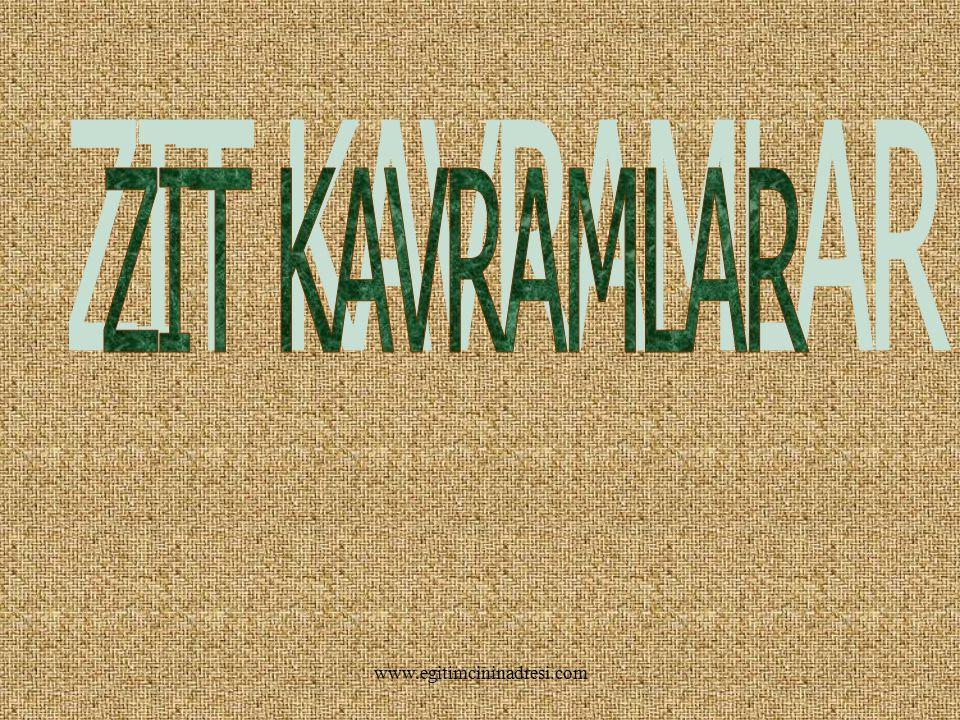 HARİKASIN BİLDİN! www.egitimcininadresi.com
