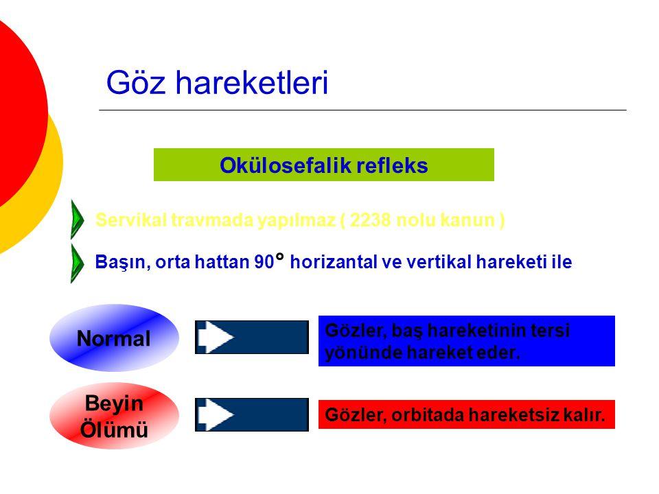 Göz hareketleri Okülovestibüler refleks 3, 6 ve 8.