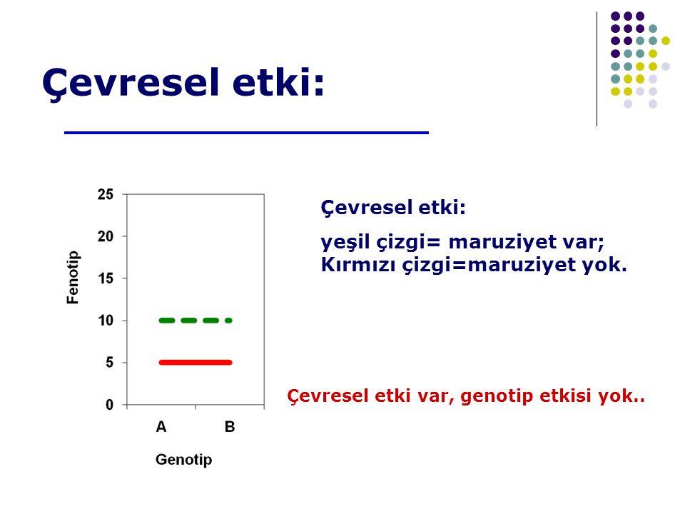 Çevresel etki: yeşil çizgi= maruziyet var; Kırmızı çizgi=maruziyet yok.