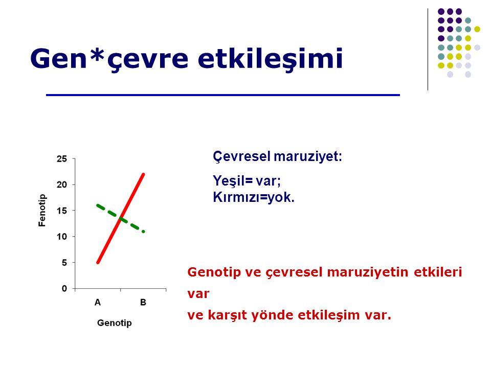 Gen*çevre etkileşimi Çevresel maruziyet: Yeşil= var; Kırmızı=yok.