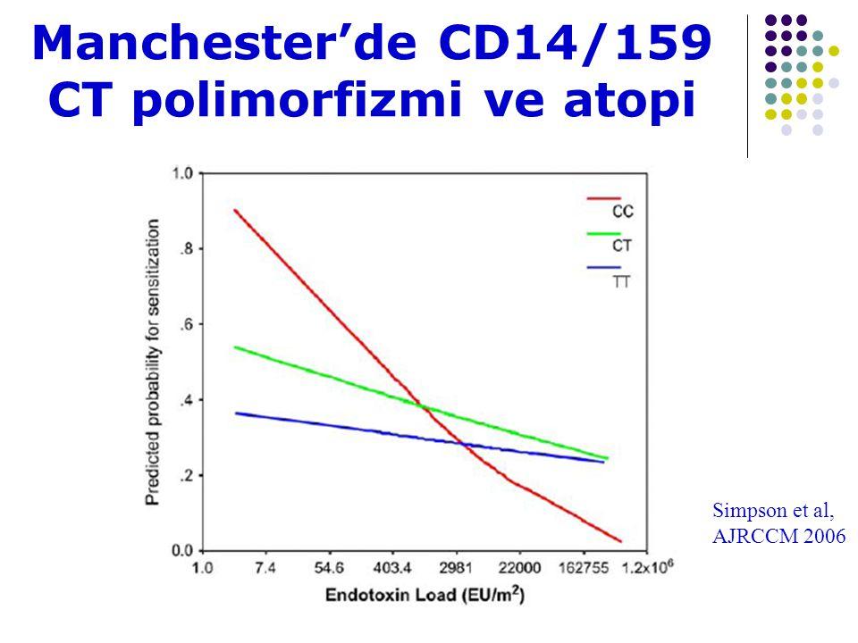 Manchester'de CD14/159 CT polimorfizmi ve atopi Simpson et al, AJRCCM 2006