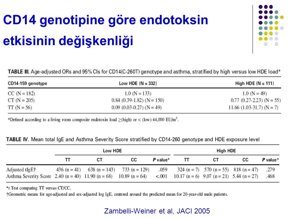 CD14 genotipine göre endotoksin etkisinin değişkenliği Zambelli-Weiner et al, JACI 2005