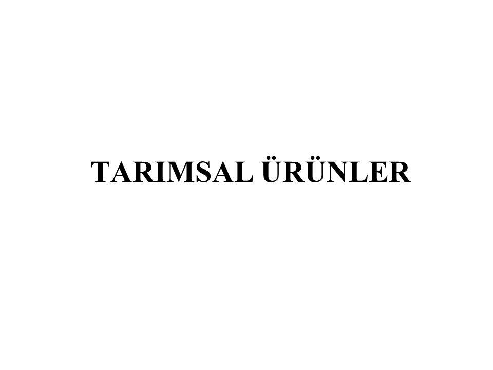 TARIMSAL ÜRÜNLER