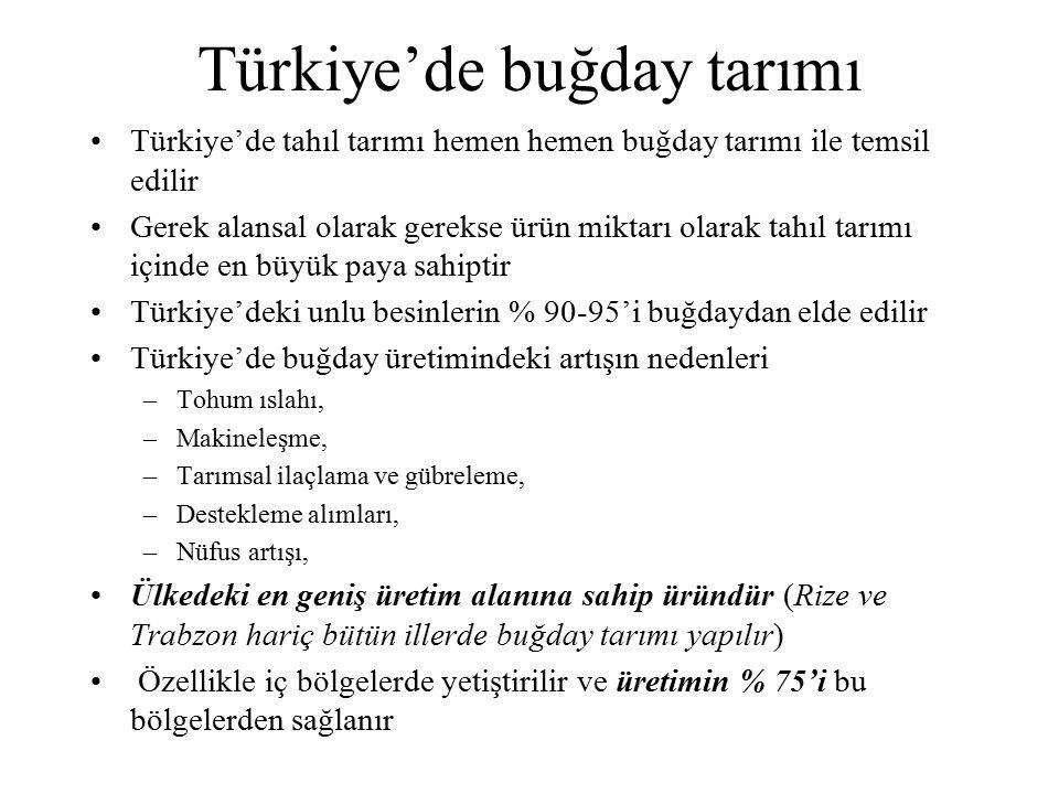 Türkiye'de buğday tarımı Türkiye'de tahıl tarımı hemen hemen buğday tarımı ile temsil edilir Gerek alansal olarak gerekse ürün miktarı olarak tahıl ta