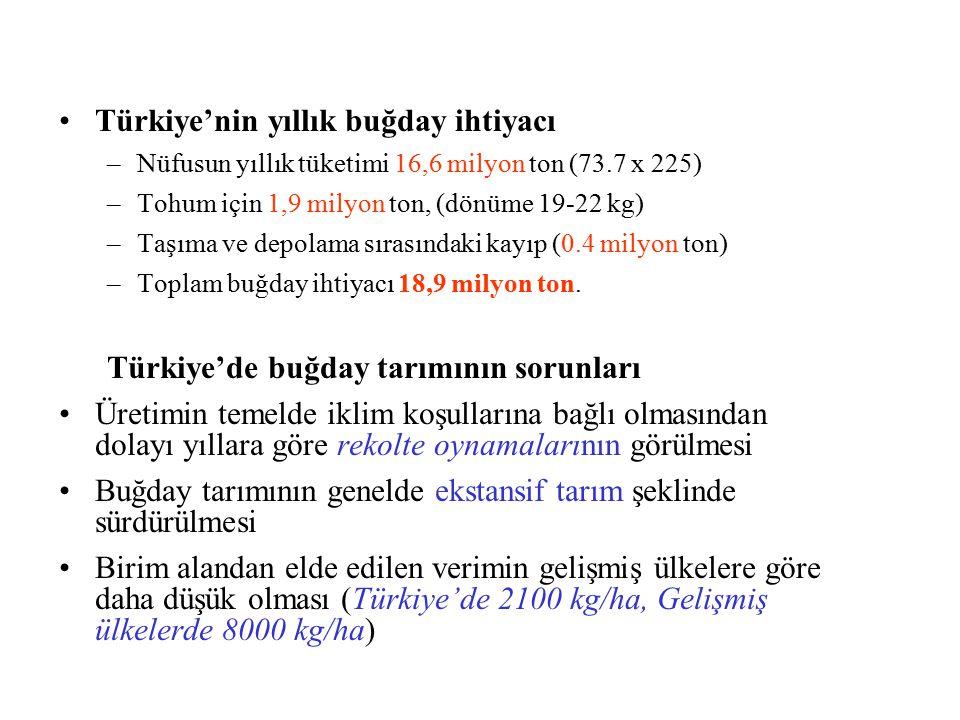 Türkiye'nin yıllık buğday ihtiyacı –Nüfusun yıllık tüketimi 16,6 milyon ton (73.7 x 225) –Tohum için 1,9 milyon ton, (dönüme 19-22 kg) –Taşıma ve depo