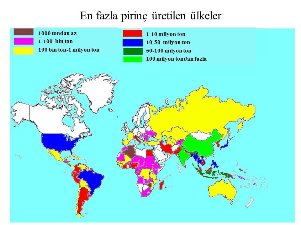 En fazla pirinç üretilen ülkeler 1-10 milyon ton 10-50 milyon ton 50-100 milyon ton 100 milyon tondan fazla 1000 tondan az 1-100 bin ton 100 bin ton-1