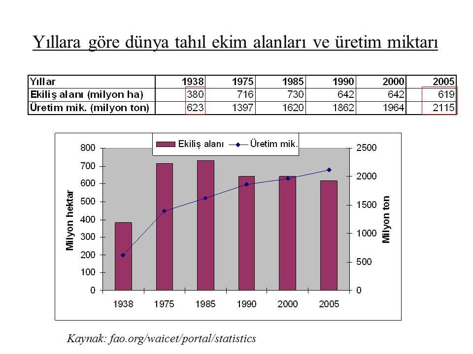Yıllara göre dünya tahıl ekim alanları ve üretim miktarı Kaynak: fao.org/waicet/portal/statistics