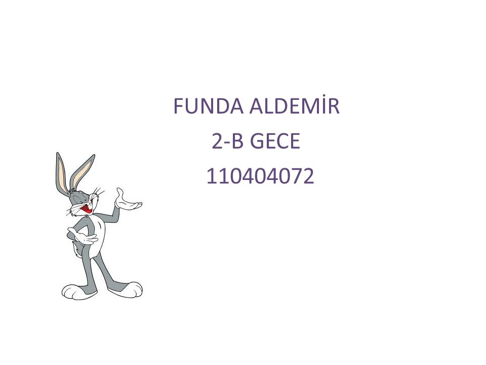 FUNDA ALDEMİR 2-B GECE 110404072