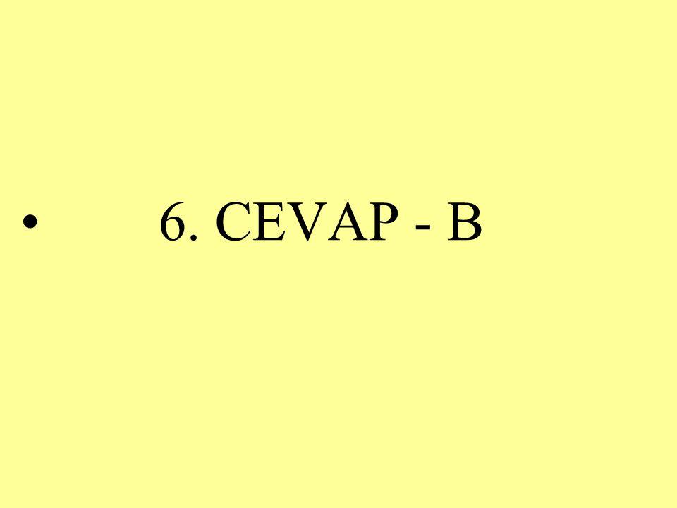 6. CEVAP - B