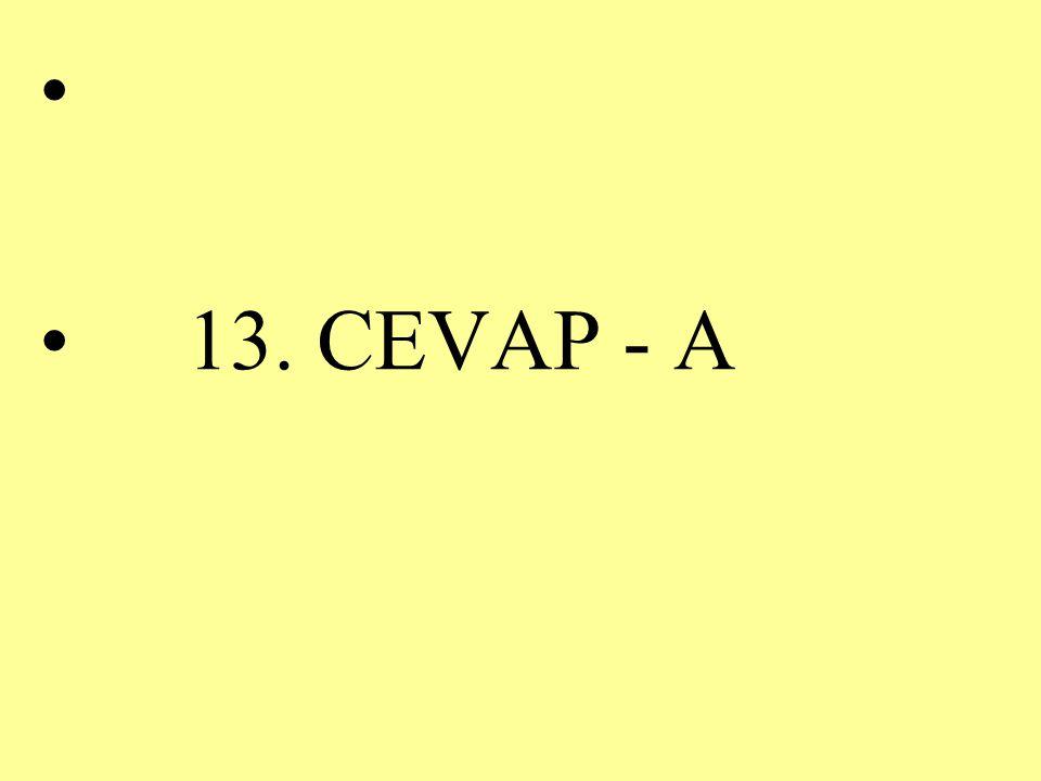13. CEVAP - A