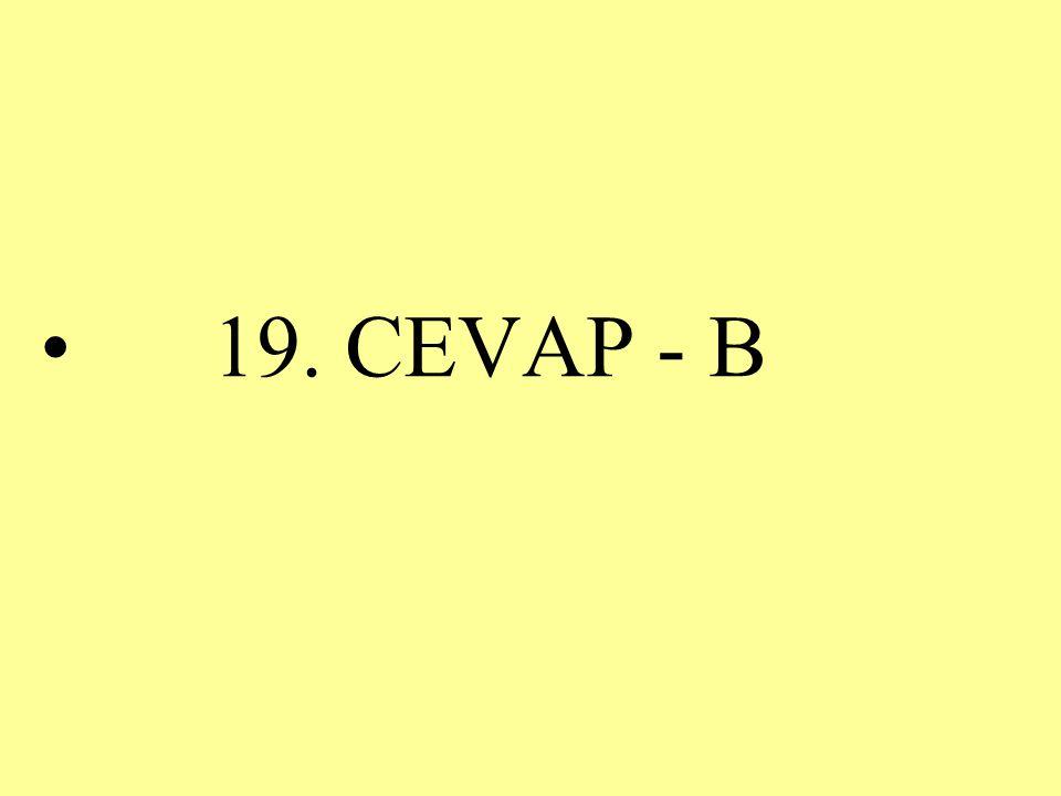 19. CEVAP - B