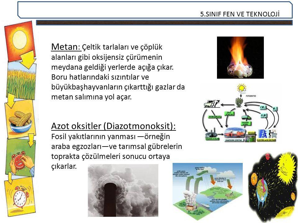 5.SINIF FEN VE TEKNOLOJİ Metan : Çeltik tarlaları ve çöplük alanları gibi oksijensiz çürümenin meydana geldiği yerlerde açığa çıkar. Boru hatlarındaki