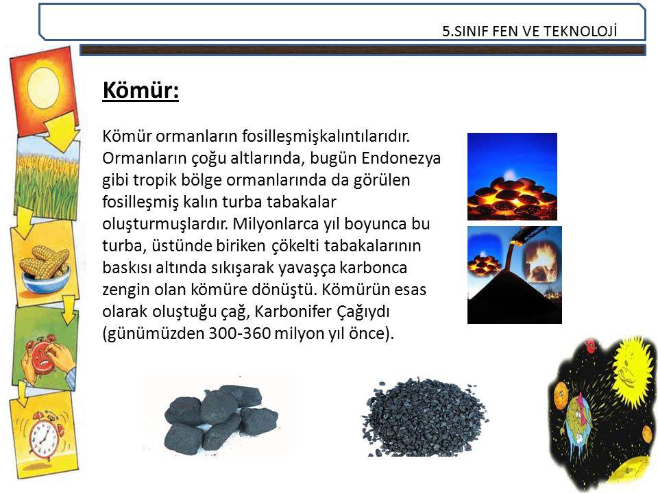 5.SINIF FEN VE TEKNOLOJİ Kömür: Kömür ormanların fosilleşmişkalıntılarıdır. Ormanların çoğu altlarında, bugün Endonezya gibi tropik bölge ormanlarında