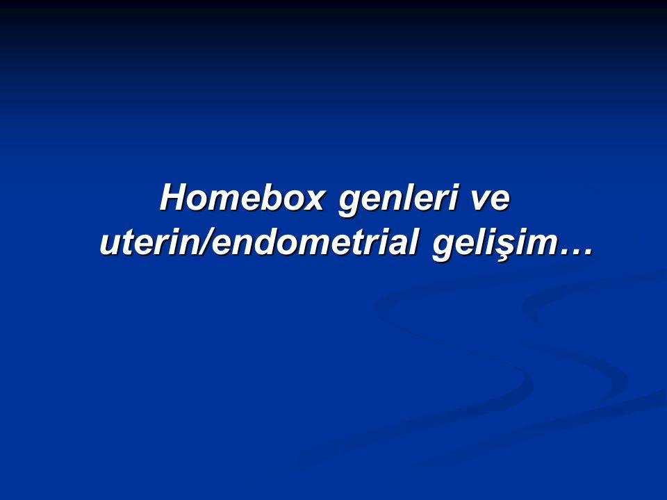 Homebox genleri ve uterin/endometrial gelişim…