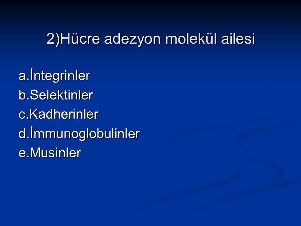 2)Hücre adezyon molekül ailesi a.İntegrinler b.Selektinlerc.Kadherinler d.İmmunoglobulinler e.Musinler