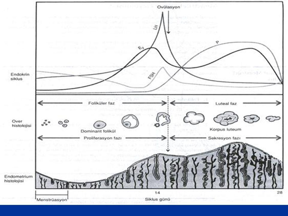 Summary of studies performed in human endometrium using microarray analysis-1 Process studied MicroarrayCompanyNumber of gene targets Study DecidualizationClontech Atlas arrayStanford University 588Popovici et al.