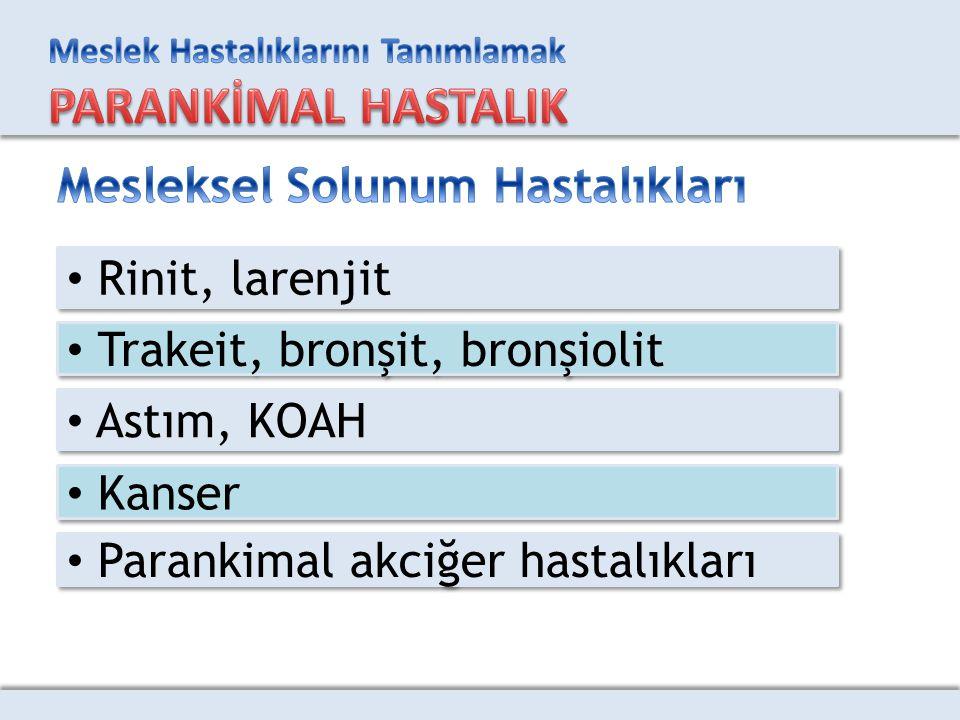 Rinit, larenjit Trakeit, bronşit, bronşiolit Astım, KOAH Kanser Parankimal akciğer hastalıkları