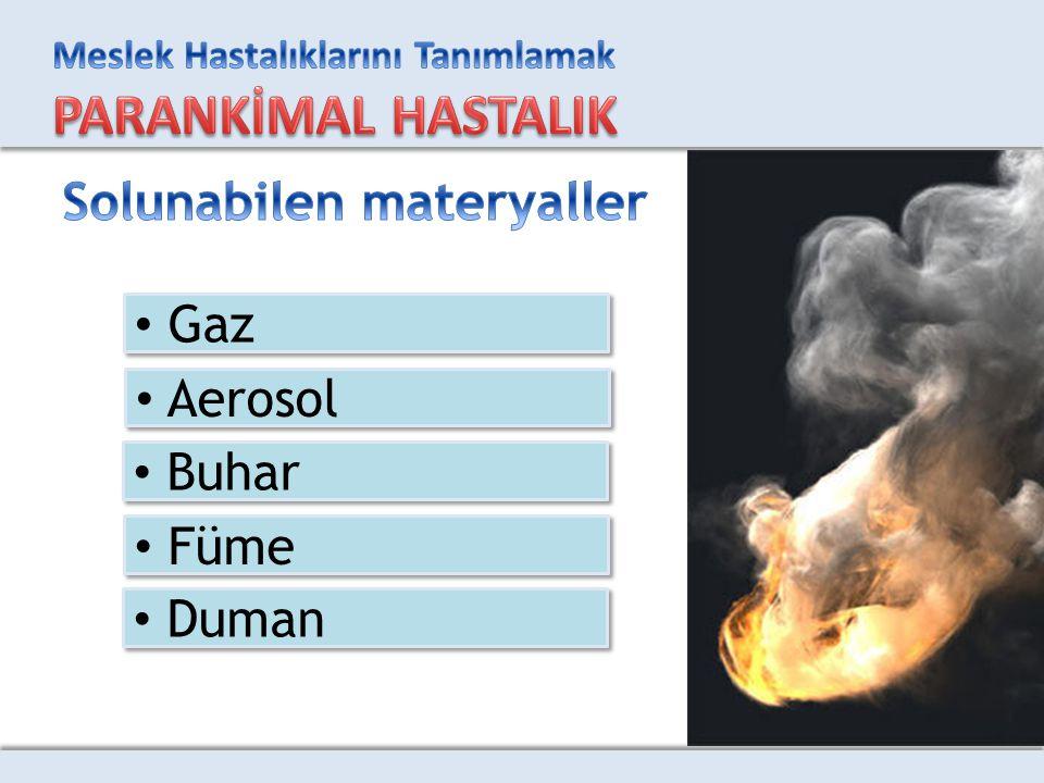 Gaz Aerosol Buhar Füme Duman
