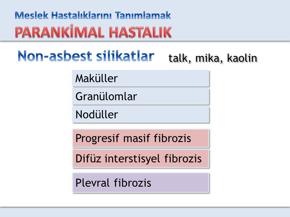 Maküller Granülomlar Nodüller Progresif masif fibrozis Difüz interstisyel fibrozis Plevral fibrozis talk, mika, kaolin