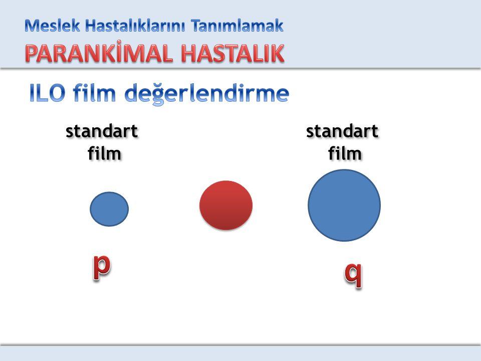 standart film standart film standart film standart film