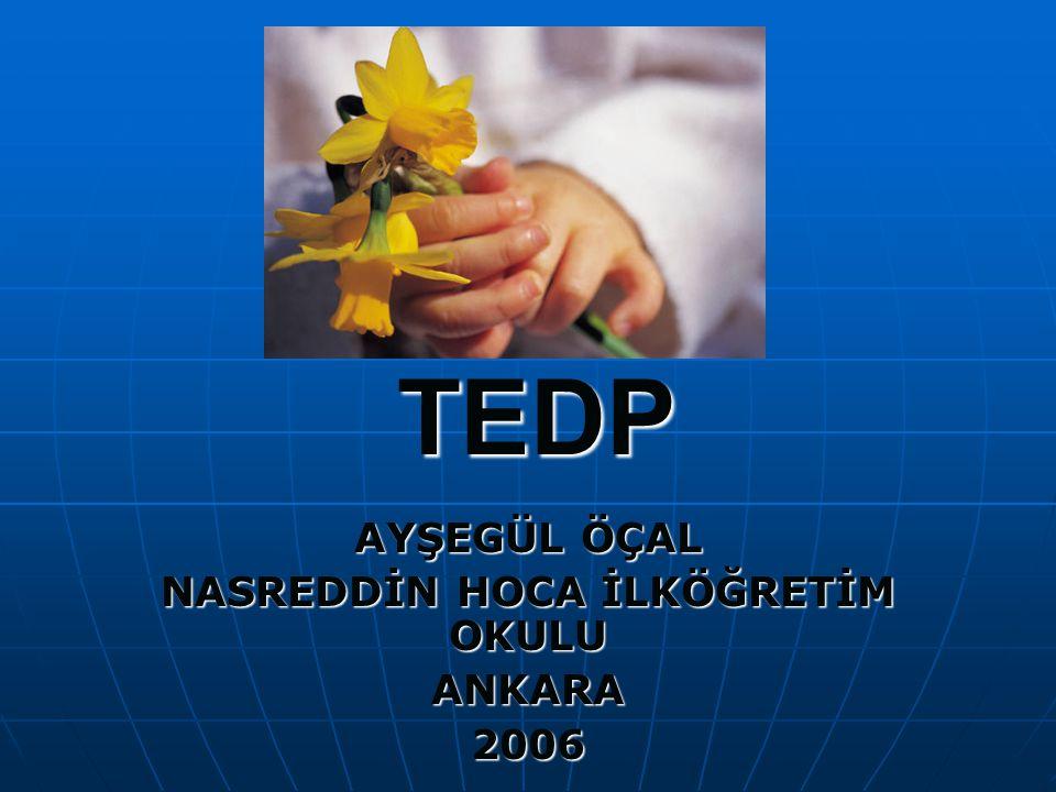 TEDP AYŞEGÜL ÖÇAL NASREDDİN HOCA İLKÖĞRETİM OKULU ANKARA2006