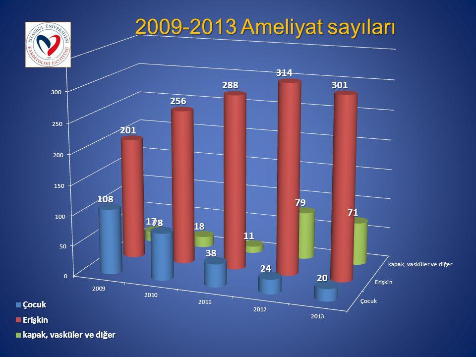 2009-2013 Ameliyat sayıları