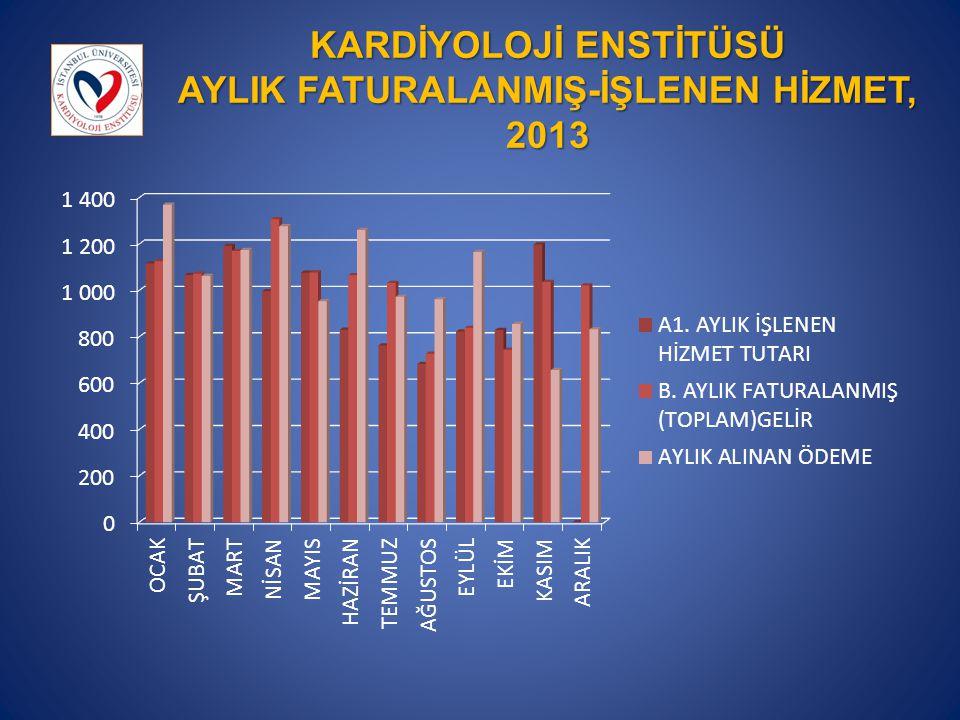 KARDİYOLOJİ ENSTİTÜSÜ AYLIK FATURALANMIŞ-İŞLENEN HİZMET, 2013