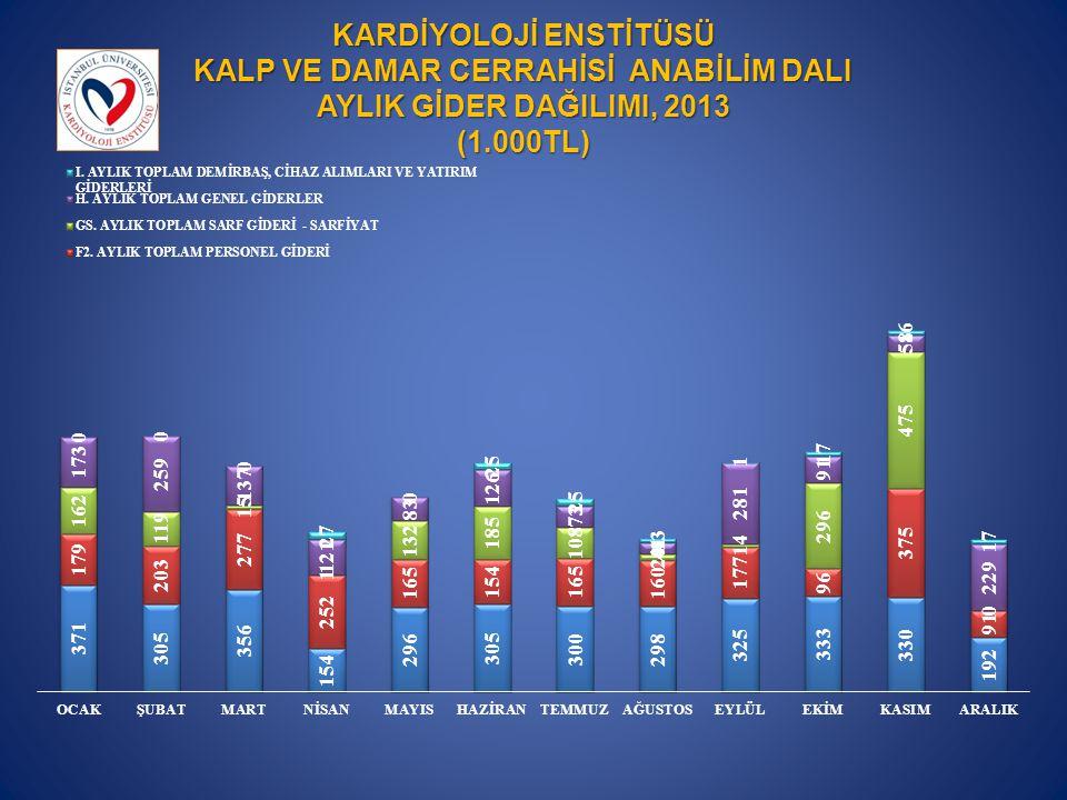 KARDİYOLOJİ ENSTİTÜSÜ KALP VE DAMAR CERRAHİSİ ANABİLİM DALI AYLIK GİDER DAĞILIMI, 2013 (1.000TL)