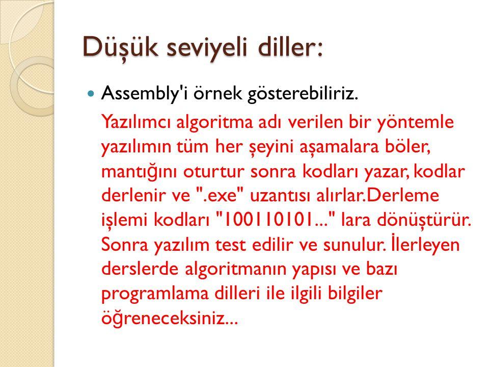 Düşük seviyeli diller: Assembly i örnek gösterebiliriz.