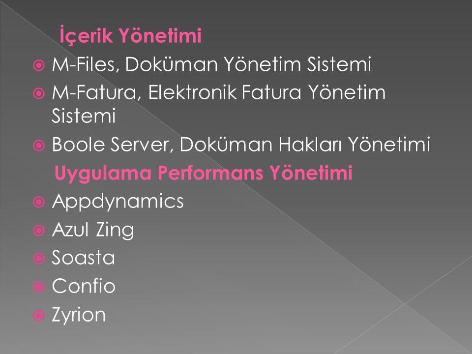 İçerik Yönetimi  M-Files, Doküman Yönetim Sistemi  M-Fatura, Elektronik Fatura Yönetim Sistemi  Boole Server, Doküman Hakları Yönetimi Uygulama Performans Yönetimi  Appdynamics  Azul Zing  Soasta  Confio  Zyrion