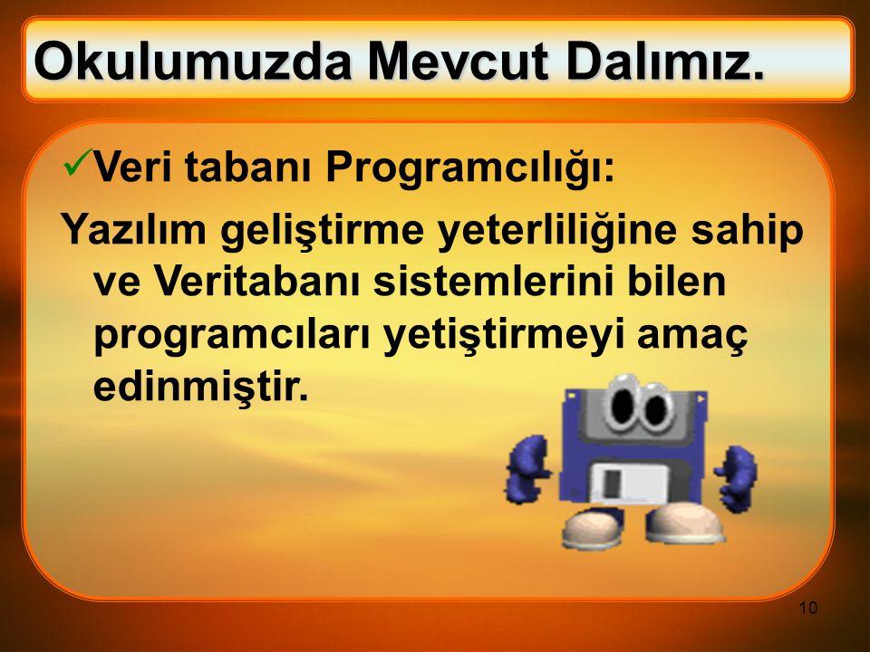 10 Veri tabanı Programcılığı: Yazılım geliştirme yeterliliğine sahip ve Veritabanı sistemlerini bilen programcıları yetiştirmeyi amaç edinmiştir. Okul