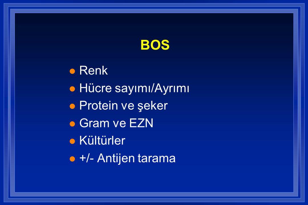 BOS l Renk l Hücre sayımı/Ayrımı l Protein ve şeker l Gram ve EZN l Kültürler l +/- Antijen tarama