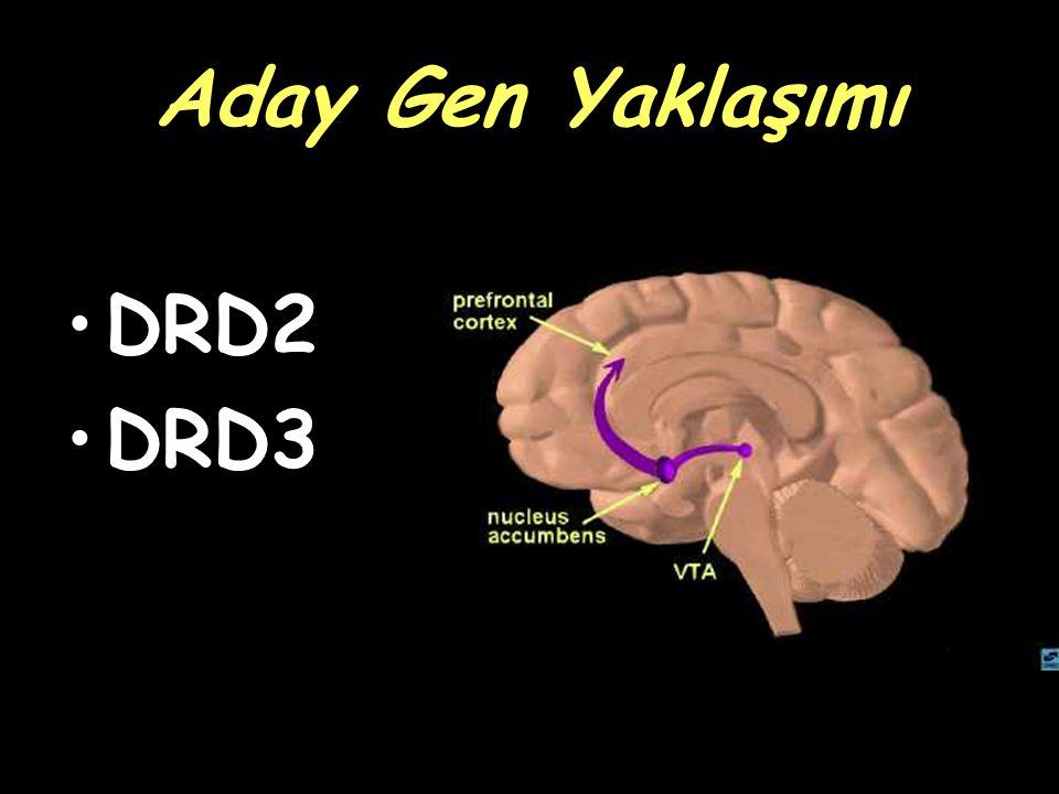 Aday Gen Yaklaşımı DRD2 DRD3
