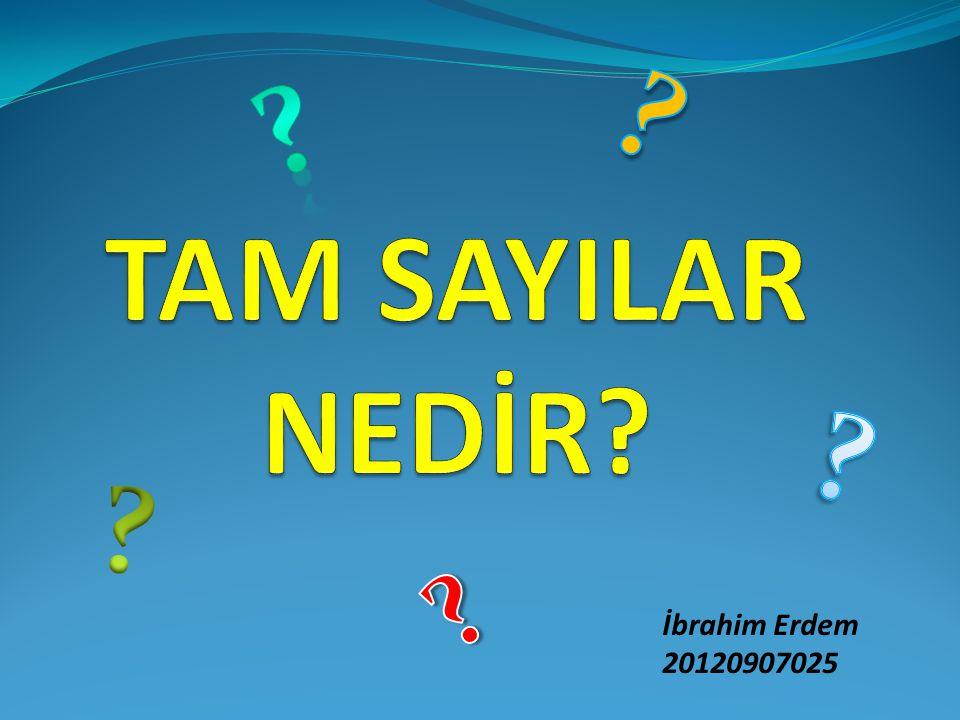 İbrahim Erdem 20120907025