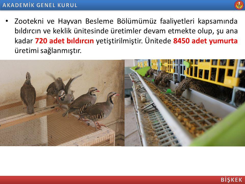 Zootekni ve Hayvan Besleme Bölümümüz faaliyetleri kapsamında bıldırcın ve keklik ünitesinde üretimler devam etmekte olup, şu ana kadar 720 adet bıldır