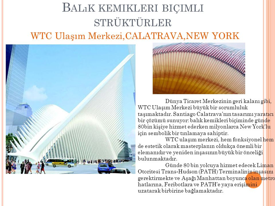B ALıK KEMIKLERI BIÇIMLI STRÜKTÜRLER WTC Ulaşım Merkezi,CALATRAVA,NEW YORK Dünya Ticaret Merkezinin geri kalanı gibi, WTC Ulaşım Merkezi büyük bir sor