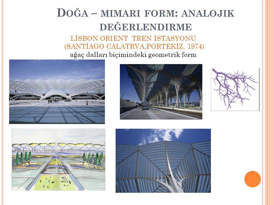 D OĞA – MIMARI FORM : ANALOJIK DEĞERLENDIRME LİSBON ORIENT TREN İSTASYONU (SANTİAGO CALATRVA,PORTEKİZ, 1974) ağaç dalları biçimindeki geometrik form
