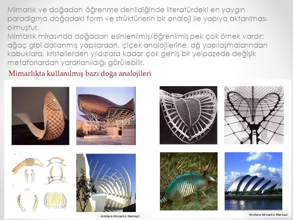 Mimarlıkta kullanılmış bazı doğa analojileri Mimarlık ve doğadan öğrenme denildiğinde literatürdeki en yaygın paradigma doğadaki form ve strüktürlerin