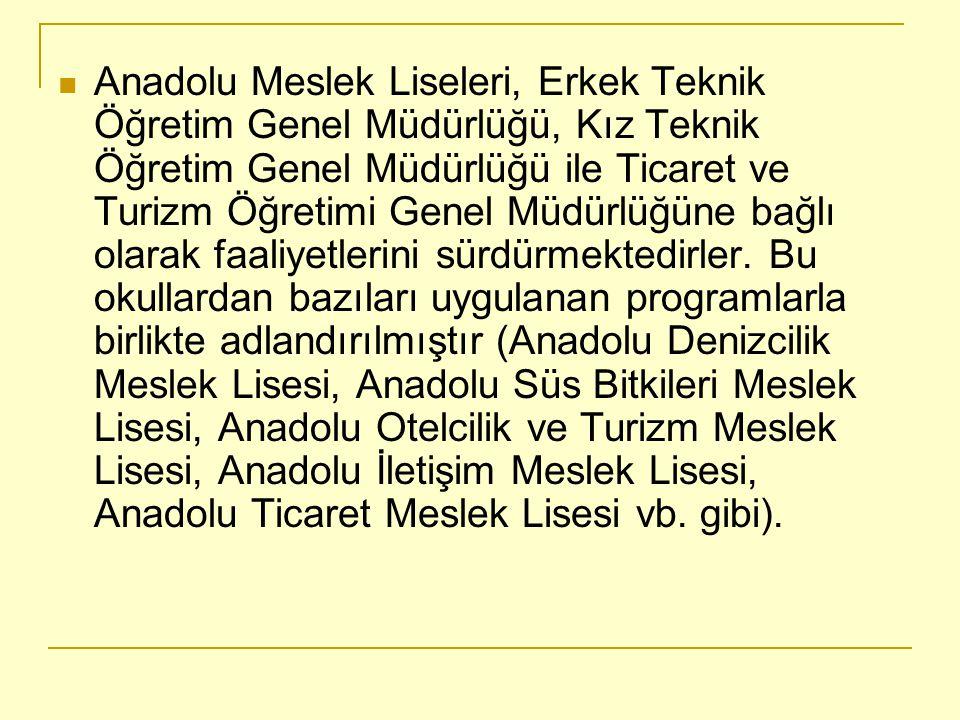 Anadolu Meslek Liseleri, Erkek Teknik Öğretim Genel Müdürlüğü, Kız Teknik Öğretim Genel Müdürlüğü ile Ticaret ve Turizm Öğretimi Genel Müdürlüğüne bağlı olarak faaliyetlerini sürdürmektedirler.
