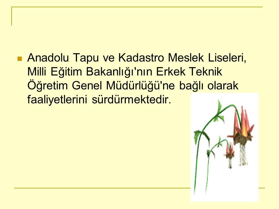 Anadolu Tapu ve Kadastro Meslek Liseleri, Milli Eğitim Bakanlığı nın Erkek Teknik Öğretim Genel Müdürlüğü ne bağlı olarak faaliyetlerini sürdürmektedir.