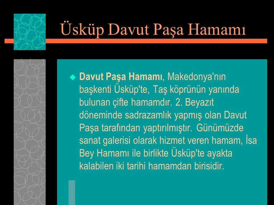  Davut Paşa Hamamı, Makedonya'nın başkenti Üsküp'te, Taş köprünün yanında bulunan çifte hamamdır. 2. Beyazıt döneminde sadrazamlık yapmış olan Davut