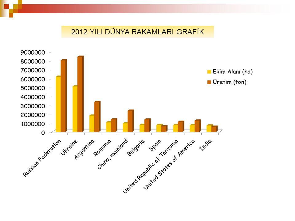 2012 YILI DÜNYA RAKAMLARI GRAFİK