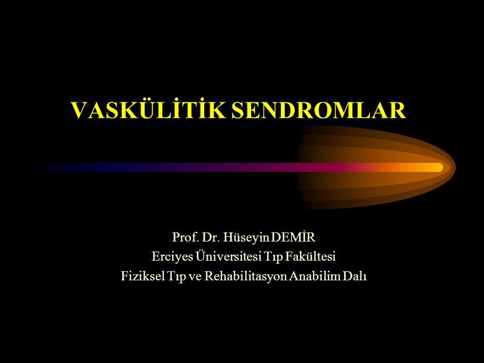 VASKÜLİTİK SENDROMLAR Prof. Dr. Hüseyin DEMİR Erciyes Üniversitesi Tıp Fakültesi Fiziksel Tıp ve Rehabilitasyon Anabilim Dalı