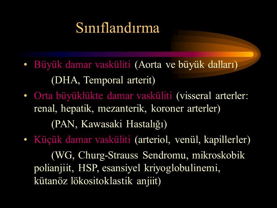 Sınıflandırma Büyük damar vasküliti (Aorta ve büyük dalları) (DHA, Temporal arterit) Orta büyüklükte damar vasküliti (visseral arterler: renal, hepatik, mezanterik, koroner arterler) (PAN, Kawasaki Hastalığı) Küçük damar vasküliti (arteriol, venül, kapillerler) (WG, Churg-Strauss Sendromu, mikroskobik polianjiit, HSP, esansiyel kriyoglobulinemi, kütanöz lökositoklastik anjiit)