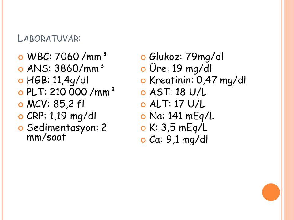 L ABORATUVAR : WBC: 7060 /mm³ ANS: 3860/mm³ HGB: 11,4g/dl PLT: 210 000 /mm³ MCV: 85,2 fl CRP: 1,19 mg/dl Sedimentasyon: 2 mm/saat Glukoz: 79mg/dl Üre: