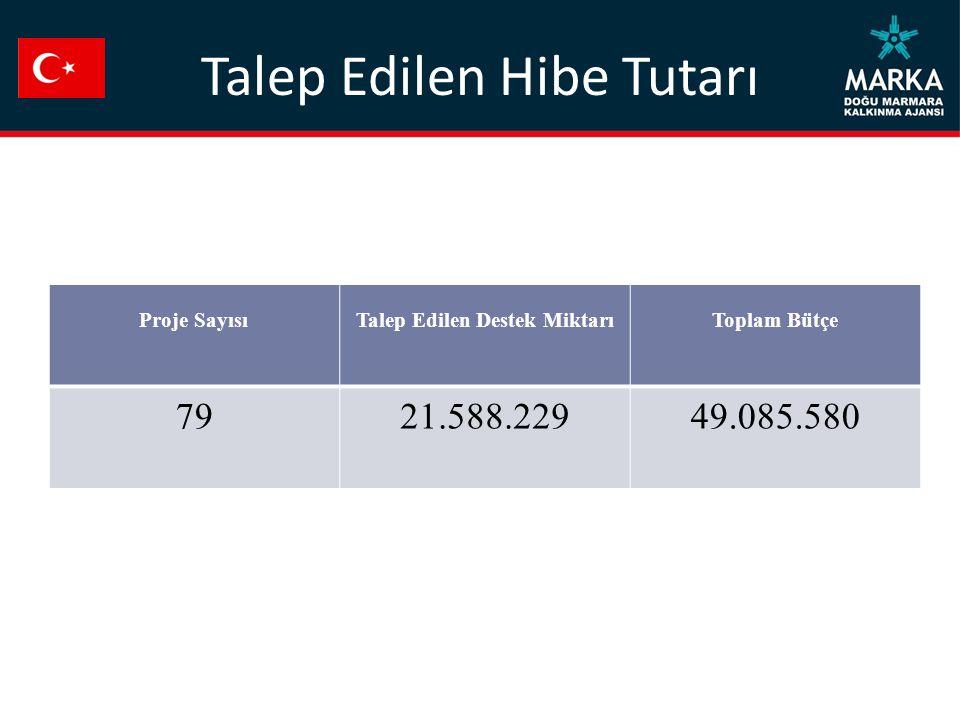 Talep Edilen Hibe Tutarı Proje SayısıTalep Edilen Destek MiktarıToplam Bütçe 7921.588.22949.085.580