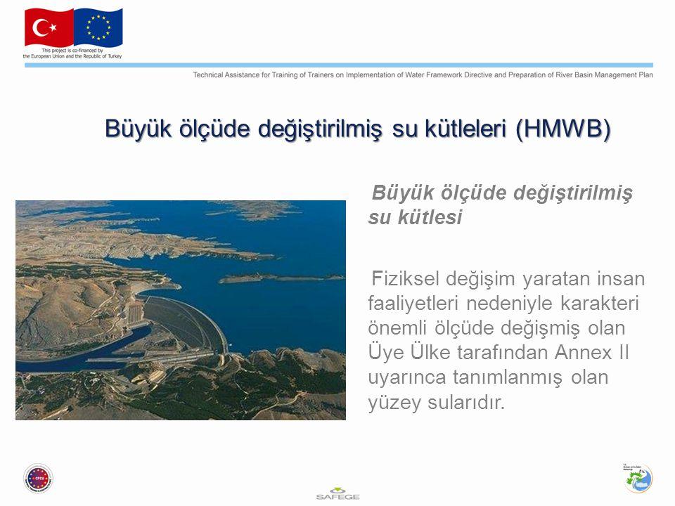Büyük ölçüde değiştirilmiş su kütleleri (HMWB) Büyük ölçüde değiştirilmiş su kütlesi Fiziksel değişim yaratan insan faaliyetleri nedeniyle karakteri önemli ölçüde değişmiş olan Üye Ülke tarafından Annex II uyarınca tanımlanmış olan yüzey sularıdır.