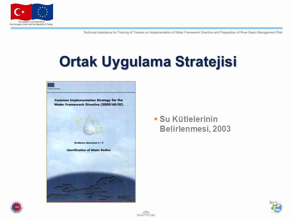Ortak Uygulama Stratejisi  Su Kütlelerinin Belirlenmesi, 2003