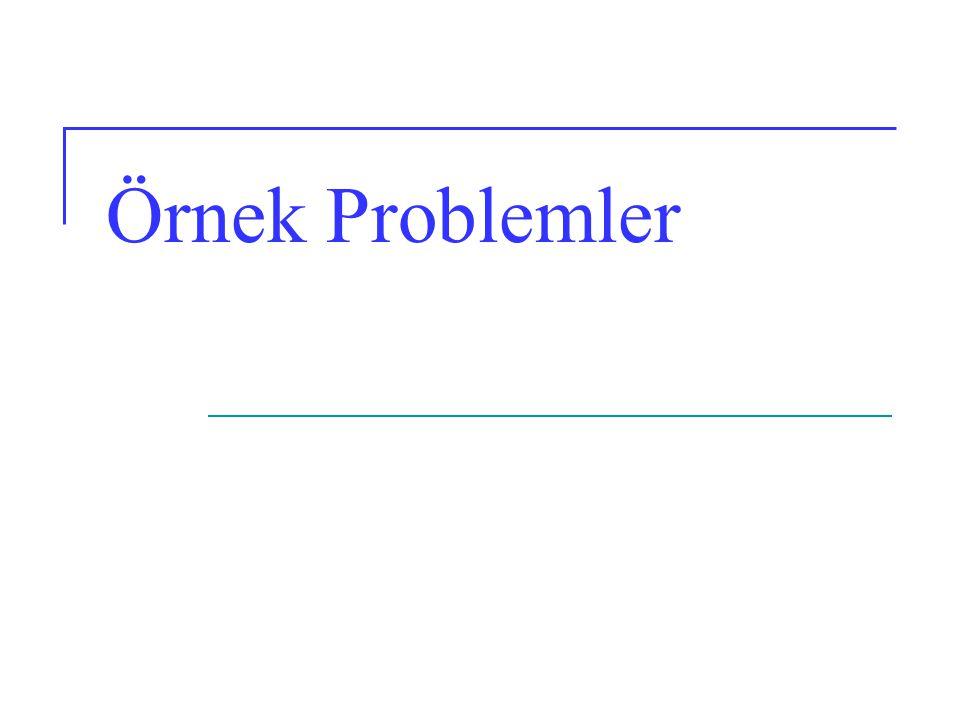 Örnek Problemler