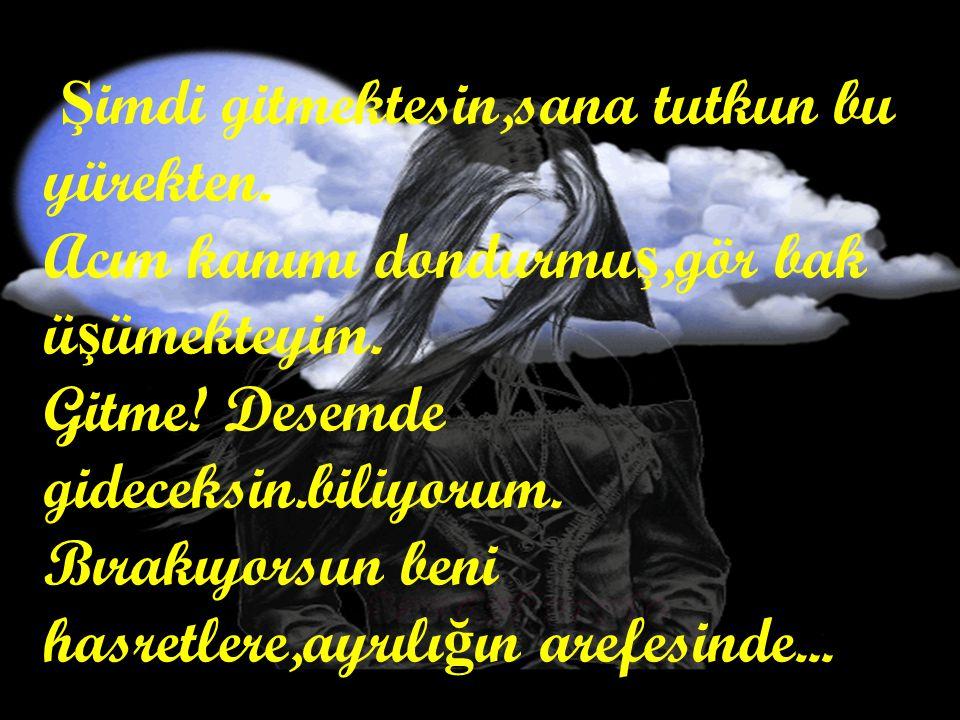 Sen ki dinmeyen bir göz yaşım, Ağrısı hiç tükenmeyen yüreğimsin… Sen bitmeyen çilem, Yüreğimin ilk yangını HASRETİMSİN… Çı ğ lıklarım dü ğ üm,bo ğ azıma tıkanmı ş.